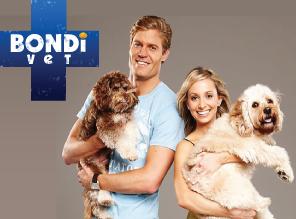 Bondi Vet: Season 6