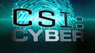Csi: Cyber: Season 1