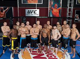 The Ultimate Fighter: Season 4