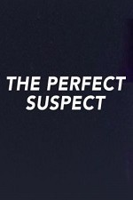 The Perfect Suspect: Season 1