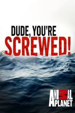 Dude, You're Screwed: Season 2