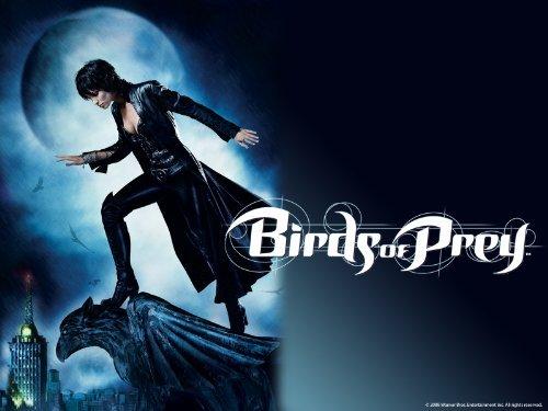 Birds Of Prey: Season 1