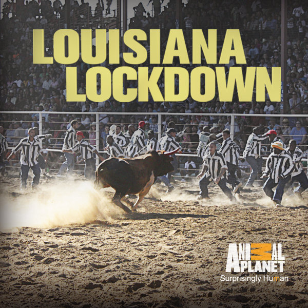 Louisiana Lockdown: Season 1