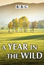 A Year In The Wild: Season 1
