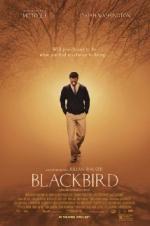 Blackbird (2014)