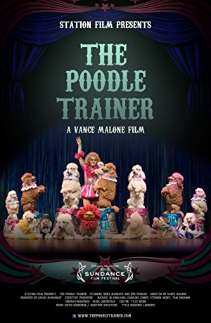 The Poodle Trainer