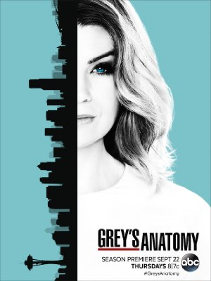 Grey's Anatomy: Season 13
