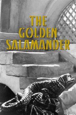 Golden Salamander