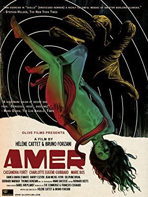 Amer 2010