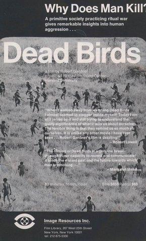Dead Birds 1963
