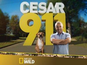Cesar 911: Season 4
