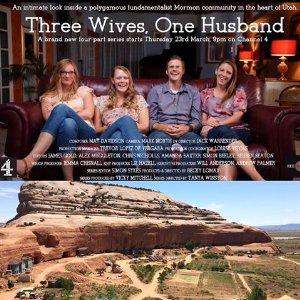 Three Wives One Husband: Season 1