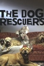 The Dog Rescuers: Season 4