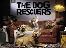The Dog Rescuers: Season 1