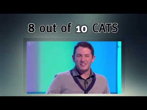 8 Out Of 10 Cats: Season 12