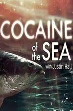 Cocaine Of The Sea