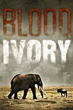 Blood Ivory: Season 1