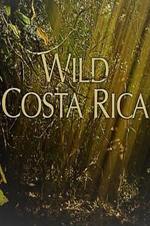 Wild Costa Rica