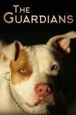 The Guardians: Season 1