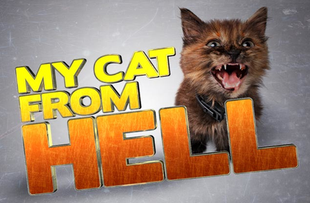 My Cat From Hell: Season 5