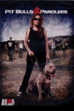 Pit Bulls And Parolees: Season 7
