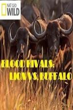 National Geographic - Blood Rivals: Lion Vs. Buffalo