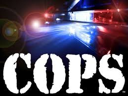 Cops: Season 25