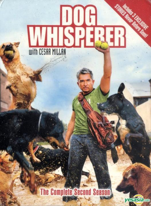 Dog Whisperer With Cesar Millan: Season 1
