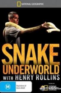 Snake Underworld