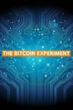 The Bitcoin Experiment