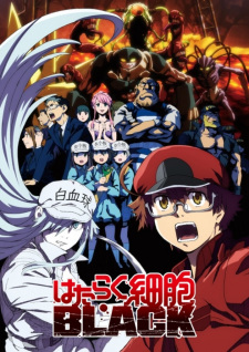 Cells At Work Code Black (dub)