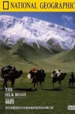 Treasure Seekers: The Silk Road