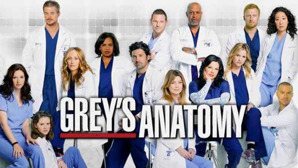Grey's Anatomy: Season 12