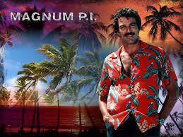 Magnum, P.i.: Season 5